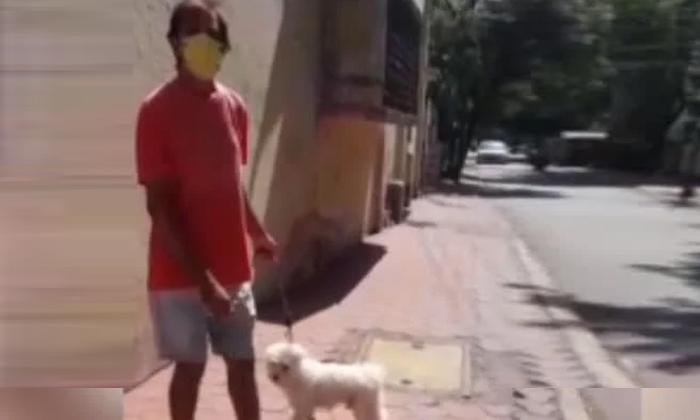 Viral Dog Arrested During Kovid Because-TeluguStop.com