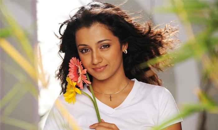 Actress Trisha Comments About Her Marriage-అలాంటి వ్యక్తినే పెళ్లి చేసుకుంటానంటున్న త్రిష..-Latest News - Telugu-Telugu Tollywood Photo Image-TeluguStop.com
