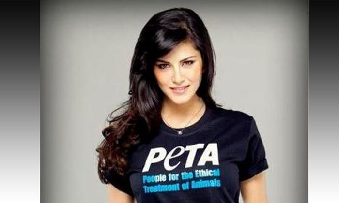 Sunny Leone Peta India To Donate 10000 Meals-TeluguStop.com