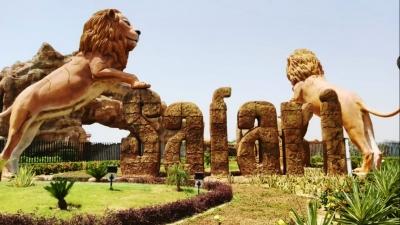 Two Lionesses At Up's Etawah Lion Safari Contract Covid-TeluguStop.com