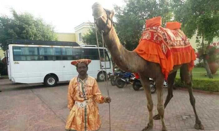 The Groom Who Strangely Celebrated The Wedding Barat At The Time Of Corona-కరోనా వేళ పెళ్లి బారాత్ ను వింతగా జరుపుకున్న వరుడు… ఎలాగంటే-General-Telugu-Telugu Tollywood Photo Image-TeluguStop.com