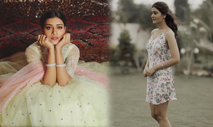 Tollywood Stunning Beauty Payal Rajput New Stylish Images-telugu Actress Hot Photos Tollywood Stunning Beauty Payal Rajp High Resolution Photo
