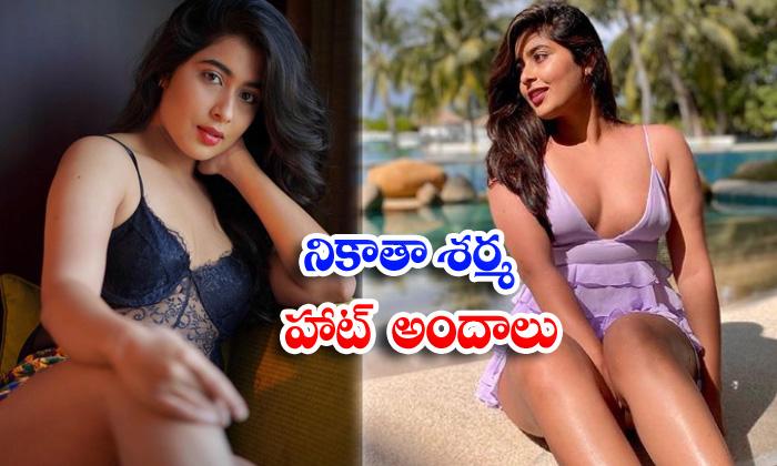 Bollywood actress nikita sharma hot pictures raising temperatures on social media-నికితా శర్మ హాట్ అ