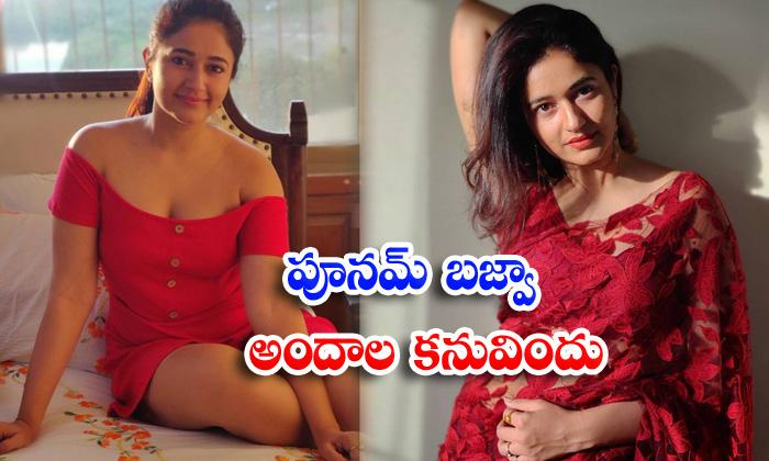 Bollywood actress poonam bajwa spicy captivating pictures-పూనమ్ బజ్వా అందాల కనువిందు