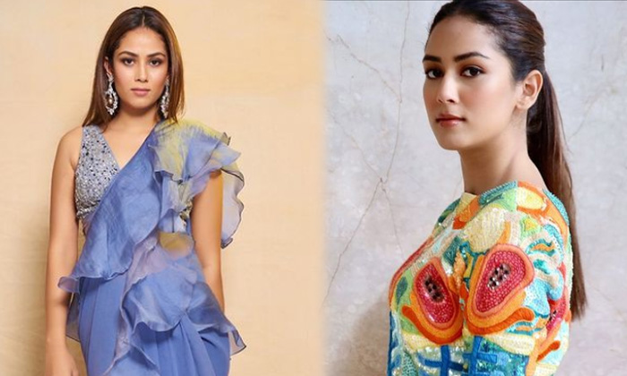 Bollywood Beauty Mira Kapoor Amazing Pictures - Telugu Mira Kapoor Alluring Pics Amazing Clicks Awesome Poses Gorgeous High Resolution Photo