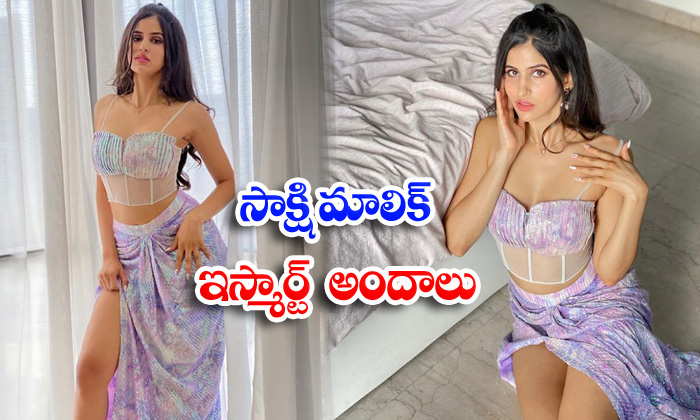 Bollywood hot beauty sakshi malik sizzling photos-సాక్షి మాలిక్ ఇస్మార్ట్ అందాలు