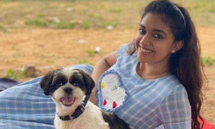Keerthy Suresh Share Her Picnic Photos Her Pet Nick-TeluguStop.com
