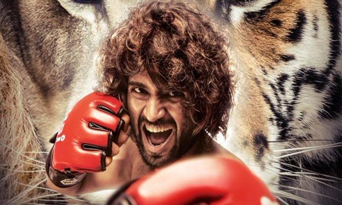 Puri Jagannadh Plan To Liger Shoot In Hyderabad-TeluguStop.com