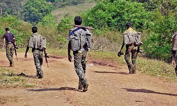Six Maoists Killed In Visakhapatnam Firing-TeluguStop.com
