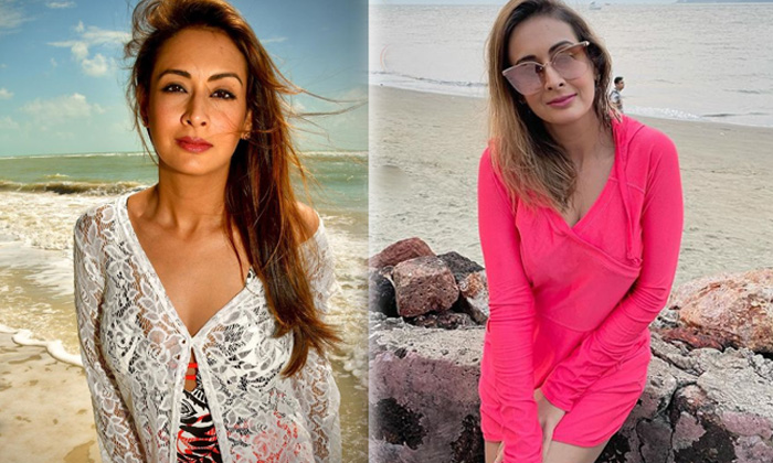 South Indian Actress Preeti Jhangiani Alluring Images - Telugu Preeti Jhangiani Alluring Images Amazing Pictures Beauti High Resolution Photo