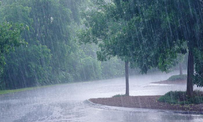 Southwest Monsoon Further Advances Into Telugu States, Says IMD-Latest News English-Telugu Tollywood Photo Image-TeluguStop.com