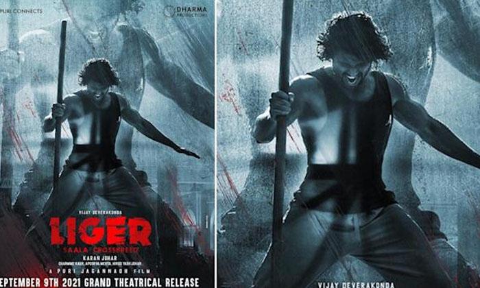 Vijay Devarakonda Clarify On Liger Ott Release-TeluguStop.com