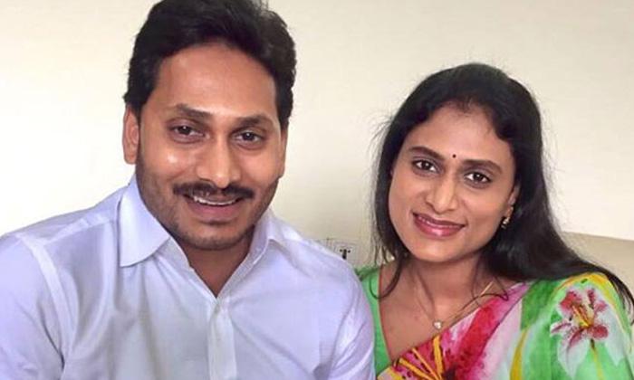Jagan Troubled On Ys Sharmila Comments-TeluguStop.com