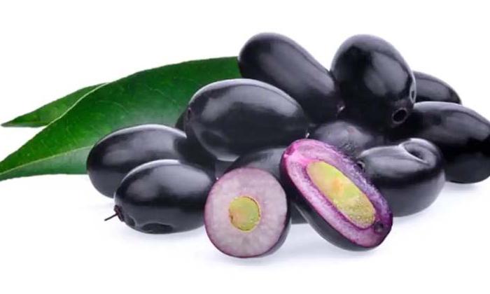 Jamun Seeds Help To Boosting Immune System-TeluguStop.com
