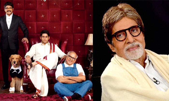Bollywood Heroines Introduced Into Tollywood By Nagarjuna-TeluguStop.com