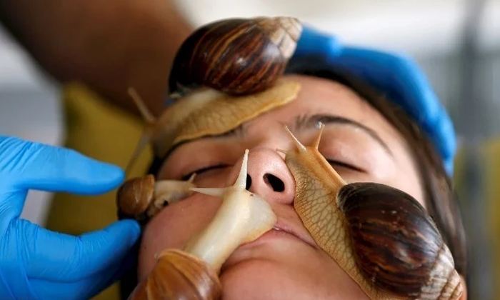 Here How Snail Slime Can Cure Age Old Problems-TeluguStop.com