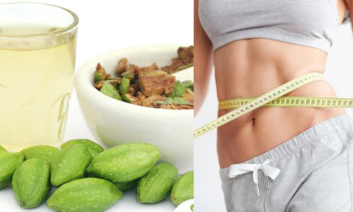 Myrobalan Can Reduce Over Weight Myrobalan-TeluguStop.com