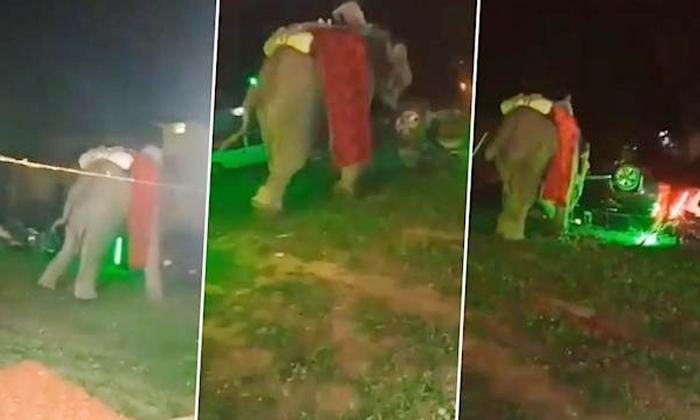 Viral An Elephant Got Crazy And Destroyed Wedding Set And Cars In Uttar Pradesh-TeluguStop.com