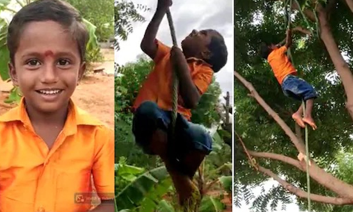 Telugu 14 Feet Rope In 23 Seconds, 5 Year Old Body Creates Record In Rope Climbing, 5-year Old Boy, Rope Climbing, Saaliavaganan, Sivagangai District, Tamil Nadu, Viral Video-Latest News - Telugu