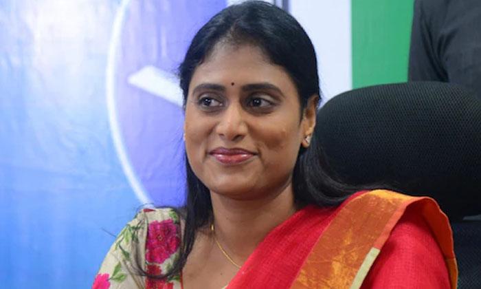 Criticisms On Sharmila Referring To The Jagan Topi-TeluguStop.com