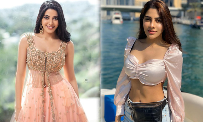 Bollywood Actress Nikki Tamboli Looks Sizzling Hot In This Pictures-telugu Actress Hot Spicy Photos Bollywood Actress Ni High Resolution Photo
