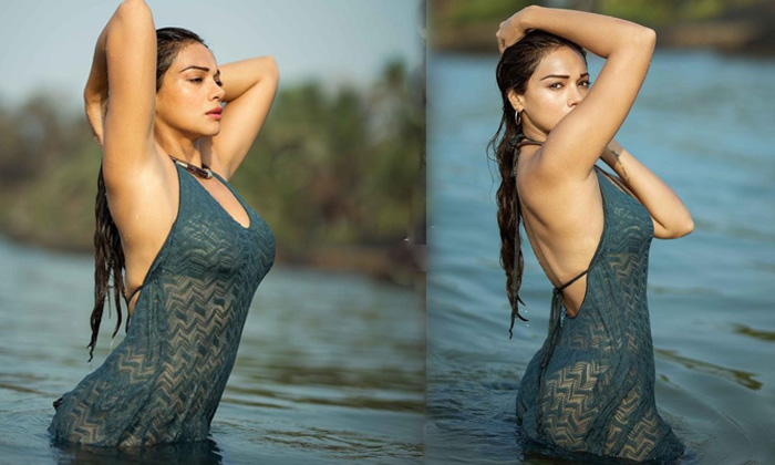Bollywood Actress Megha Gupta Looks Sizzling Hot In This Pictures-telugu Actress Hot Spicy Photos Bollywood Actress Megh High Resolution Photo