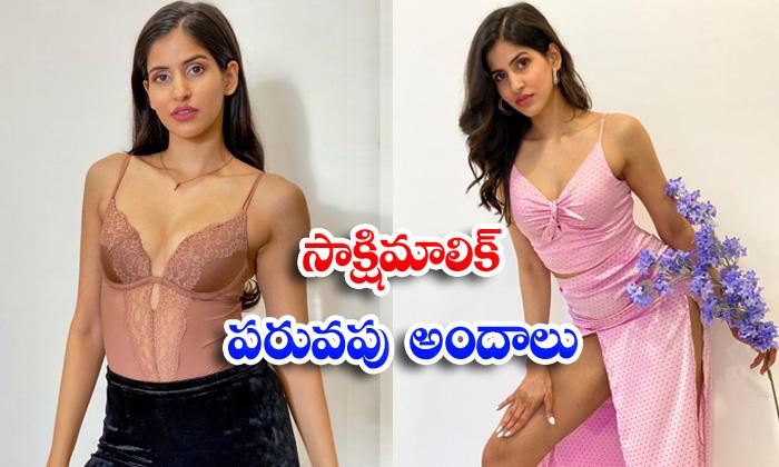 Bollywood hot beauty sakshi malik Cut and spicy images-సాక్షి మాలిక్ పరువపు అందాలు