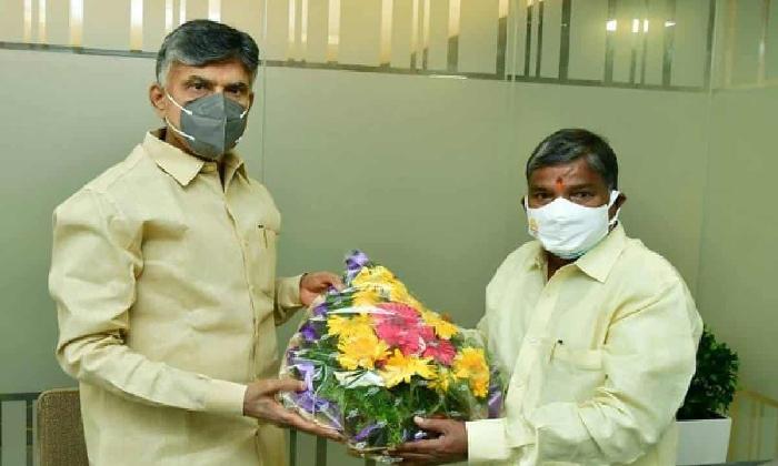 Chandrababu Appoints Bakkani Narasimhulu As Ttdp President-TeluguStop.com