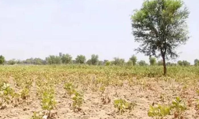 Telangana Government Hikes Land Rates Registrations-TeluguStop.com