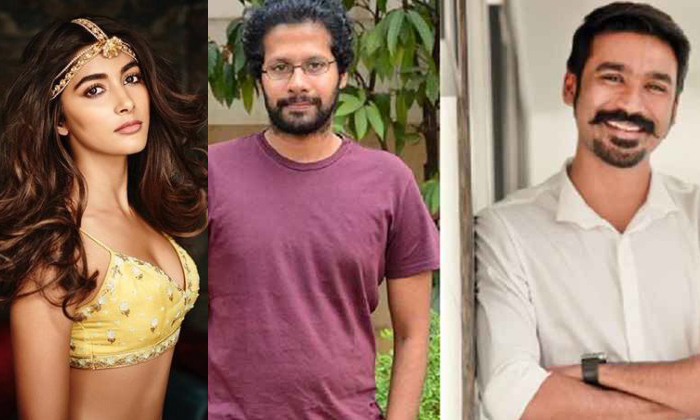 Actress Pooja Hegde Dhanush Romance Venky Atluri-TeluguStop.com