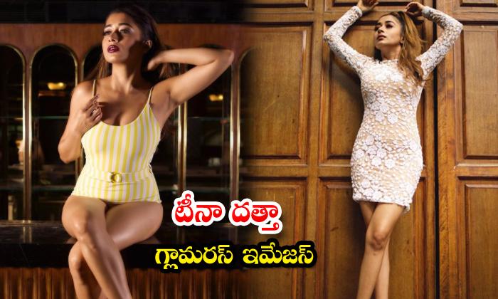 South indian Actress Tina Datta hot glamorous images-టీనా దత్తా గ్లామరస్ ఇమేజస్