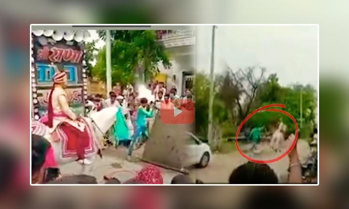 Wedding Horse Runs Away With Groom In Rajasthan-TeluguStop.com