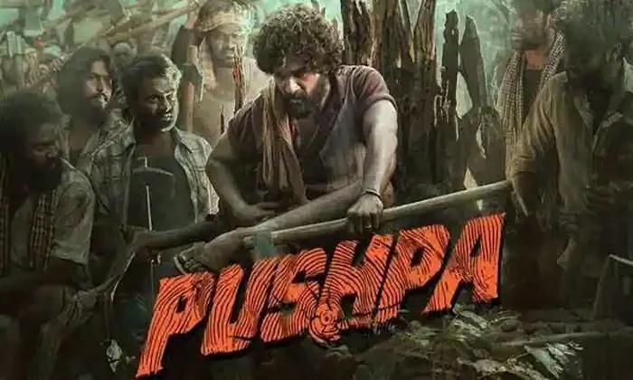 Allu Arjun Pushpa Movie Release Date Issue-TeluguStop.com