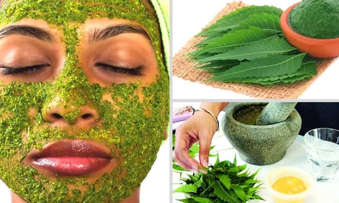 Beauty Benefits Of Neem Leaves In Rainy Season-TeluguStop.com