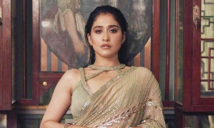Regina Is Not Part Of Chatrapati Remake-TeluguStop.com