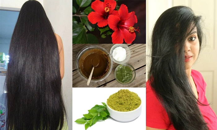 How To Get Silky Hair With Hibiscus-TeluguStop.com