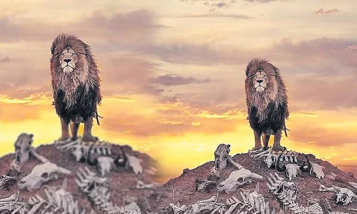 Wow Would It Really Be Like If The Lion Stood Stiff-TeluguStop.com
