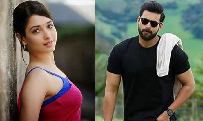 Milky Beauty Tamanna In Varun Tej Gani Movie Item Song-TeluguStop.com
