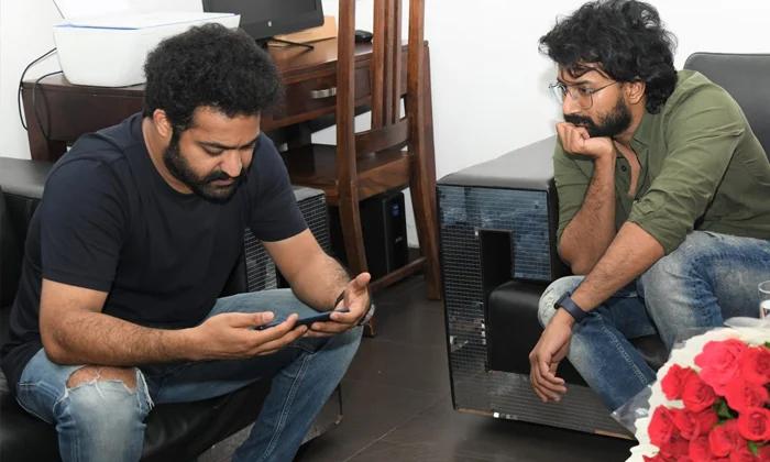 Ntr Lunch Satyadev Timmarusu Trailer-TeluguStop.com
