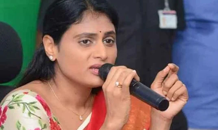 A Series Of Shocks To Sharmila People Who Do Not Fall For Initiation To The End-TeluguStop.com