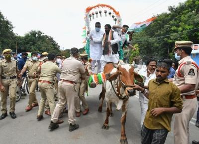 Telangana Cong Leader Falls Off Bullock Cart During Protest-TeluguStop.com