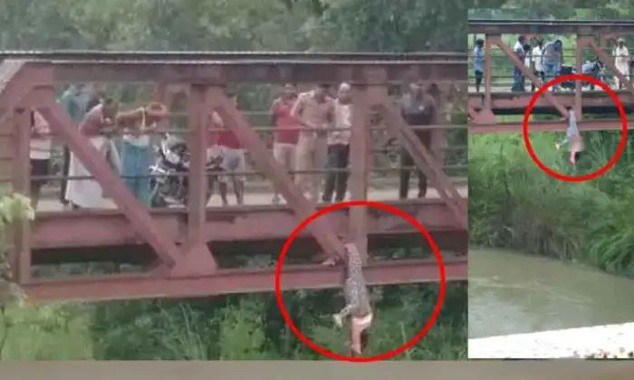 Terrible Incident 17 Years Minor Girl Got Killed By Family Members In Uttarpradesh For Wearing Jeans-TeluguStop.com
