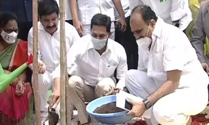 Telugu Ap News, Ap Politics, Jagan Anna Pachchatoranam, Tress Oxygen, Ys Jagan, Ysrcp-Telugu Political News