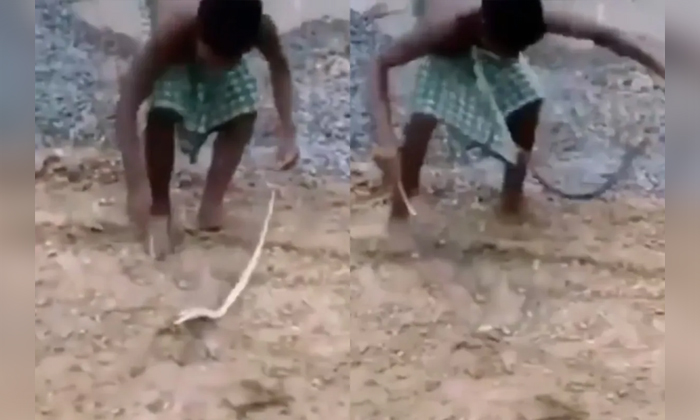 Viral Video Man Troubled By The Snake Who Played Games With It-TeluguStop.com