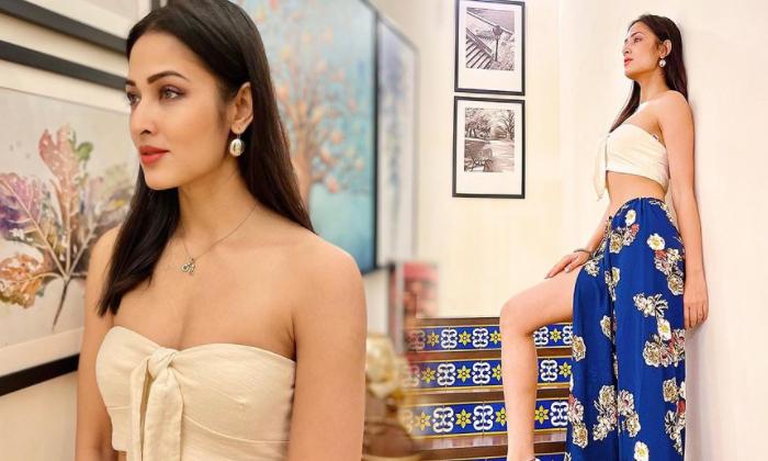 Bollywood Actress Vidisha Srivastava Sensational Stunning Images-విదిషా శ్రీవాస్తవ అందాల కనువిందు-telugu Actress Hot Photos High Resolution Photo
