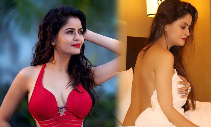 Bollywood Actress Gehana Vasisth Looks Sizzling Hot In This Pictures-telugu Actress Hot Photos Bollywood Actress Gehana High Resolution Photo