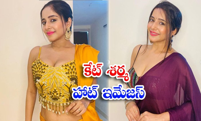 Bollywood actress kate sharma looks bold and beautiful in this pictures-కేట్ శర్మ హాట్ ఇమేజస్