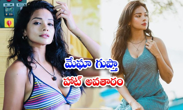 Bollywood actress megha gupta raises the hotness quotient in these pictures-మేఘా గుప్తా హాట్ అవతారం