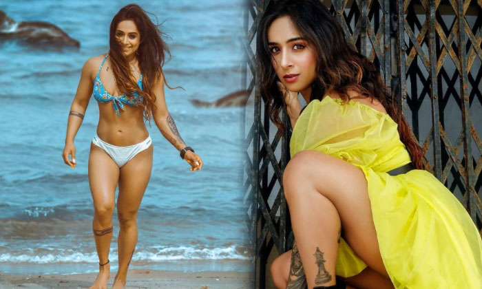 Bollywood Beauty Shweta Mehta Looks Sizzling Hot In This Pictures-telugu Actress Hot Photos Bollywood Beauty Shweta Meht High Resolution Photo