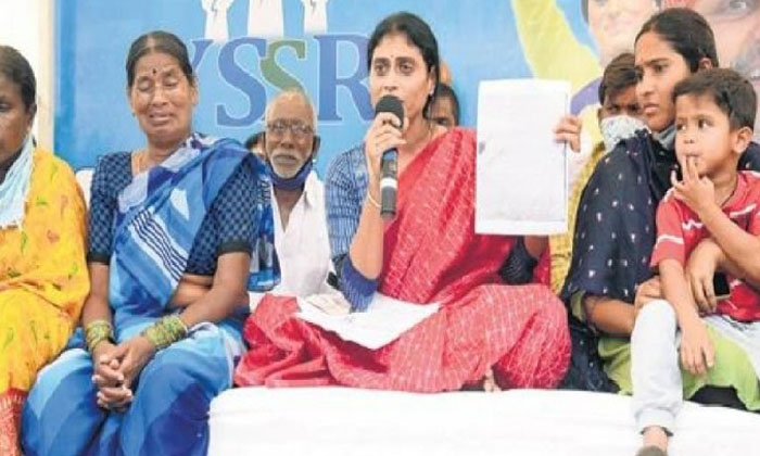 Sharmilas Party Is Becoming Popular With Trolls Is That The Reason For The-TeluguStop.com